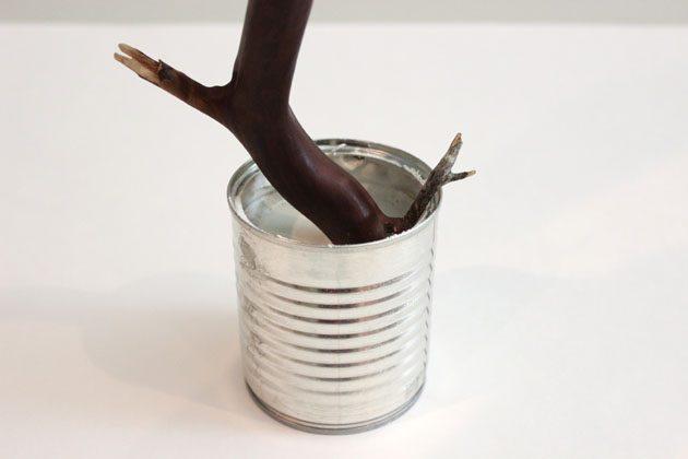 тавьте ветку в центр высокой консервной банки и, удерживая ветку, заливайте в банку гипс примерно на ¾ ее объема