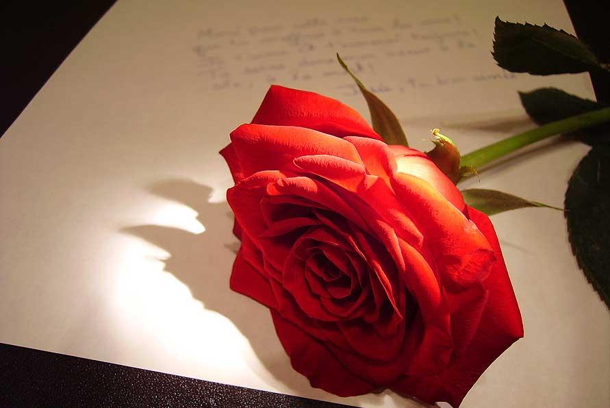 Излейте свои чувства на бумаге в День святого Валентина