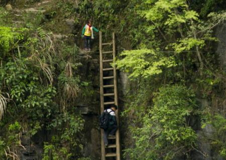 школьники, взбирающиеся по незакрепленным деревянным лестницам – поселение Zhang Jiawan, Южный Китай.