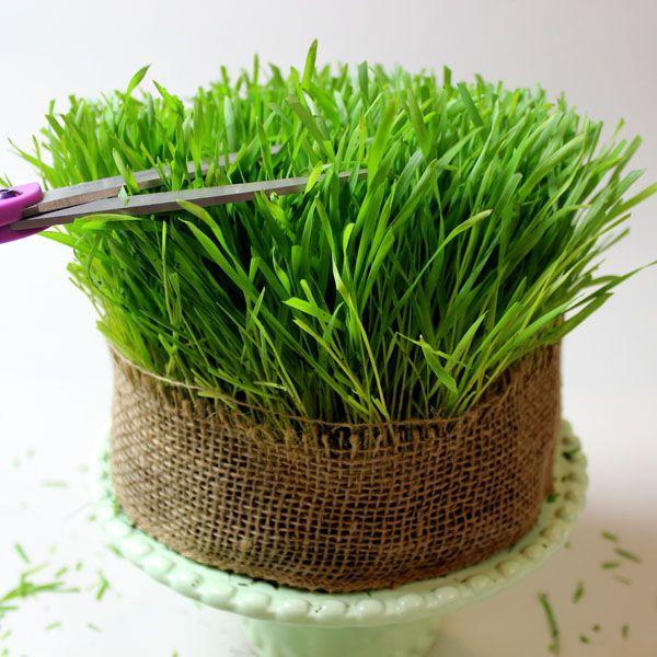 оборачивание пласта холщевой лентой и обрезание травы