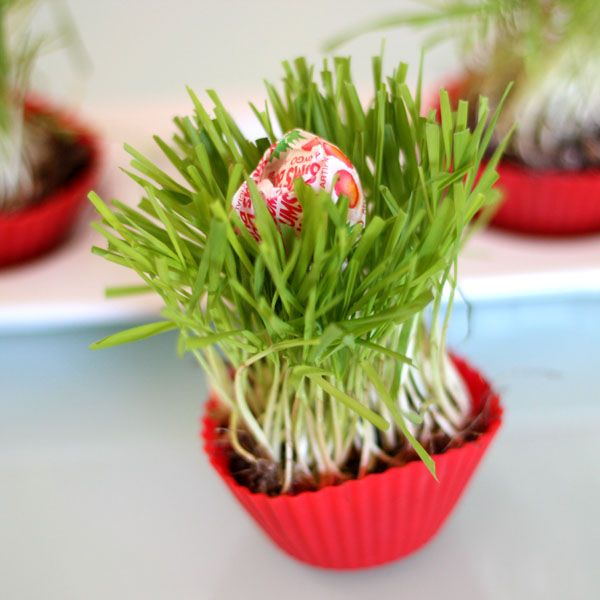 сувенирные кексы с травой на Пасху