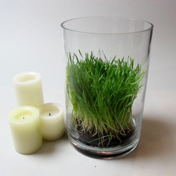 помещение травы в вазу