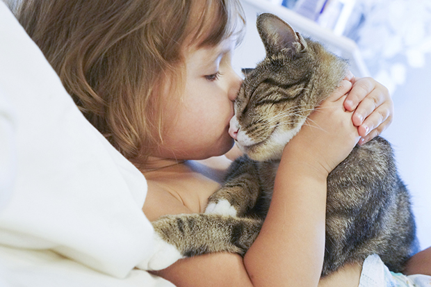 ребенок целует кота, кот жмурится