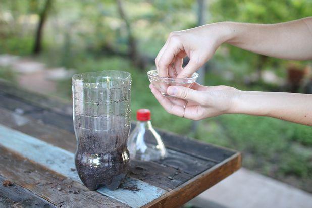 Опрыскайте почву водой