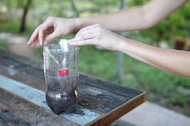 переверните вверх ногами срезанную верхушку пластиковой бутылки и вложите ее в бутылку