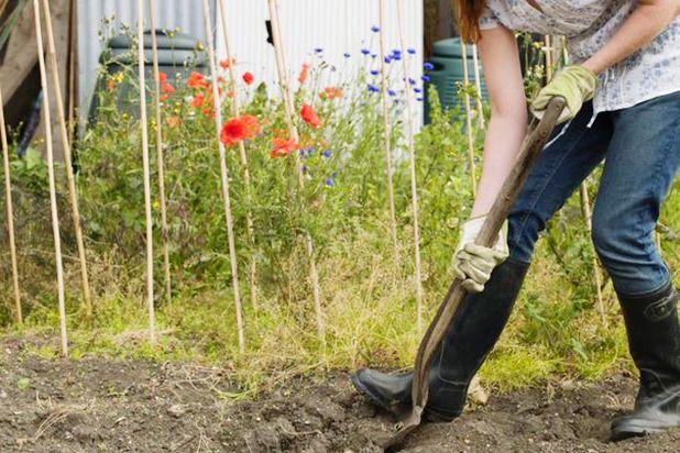 девушка перекапывает почву в саду