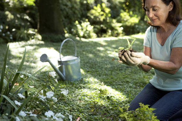 женщина высаживает ростки в саду