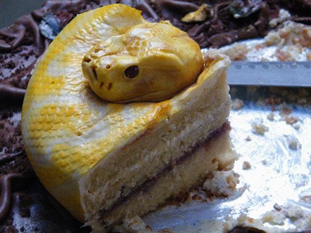 Торт-змея, свернувшаяся в кольцо