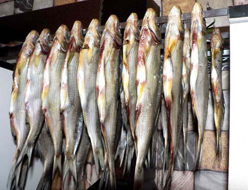 Как солить и вялить рыбу