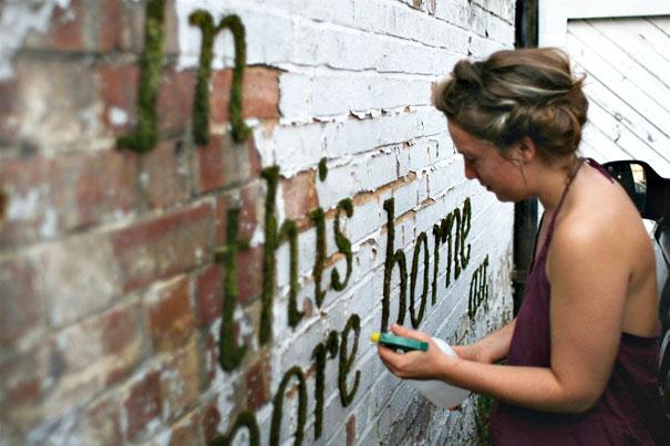 эко-граффити из мха: надписи