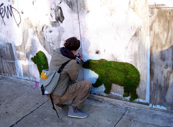 эко-граффити из мха: медведи