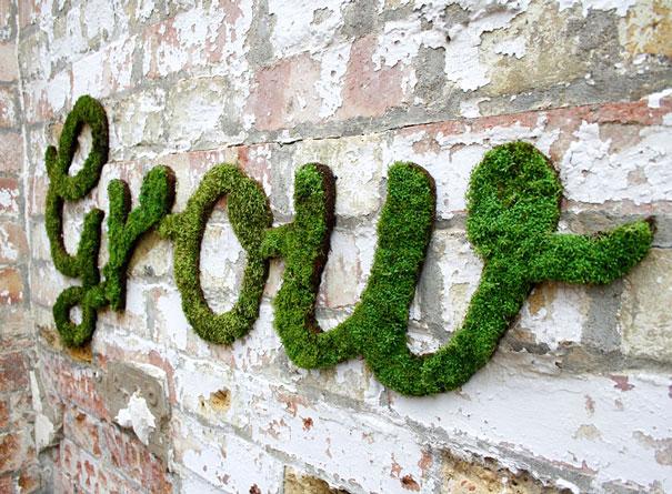 эко-граффити из мха: надпись - расти