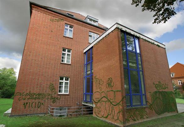 эко-граффити из мха: украшенный кирпичный дом