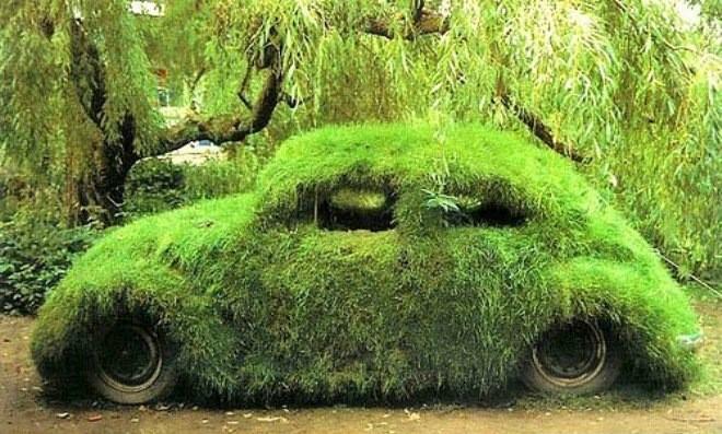 эко-граффити из мха: автомобиль, полностью покрытый мхом