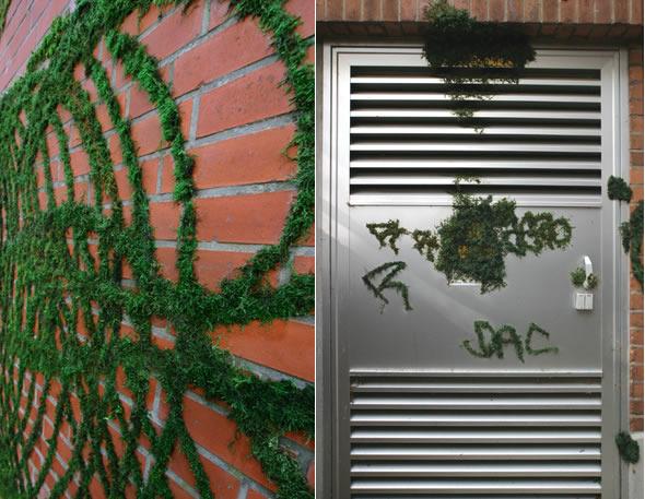 эко-граффити из мха: круги
