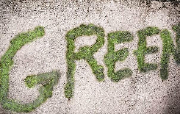 надпись - граффити из мха