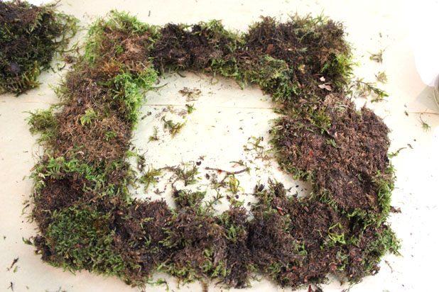 плотно разложите куски листового мха по всей проволочной рамке