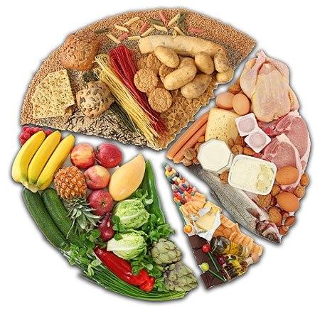 круг здорового питания различные группы продуктов