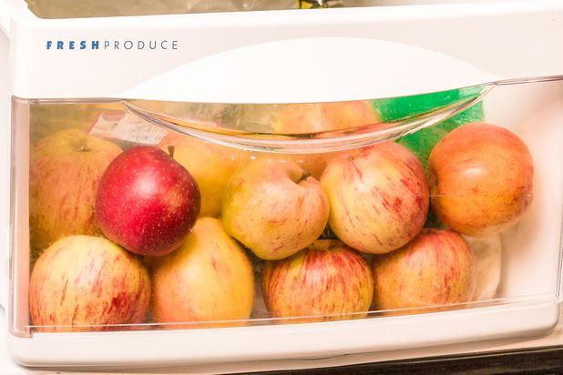 нижний отсек в холодильнике для фруктов и овощей: хранение яблок