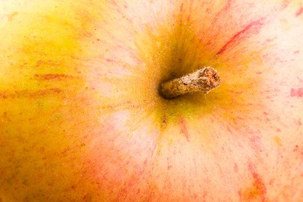 основной и дополнительный цвета у зрелого яблока