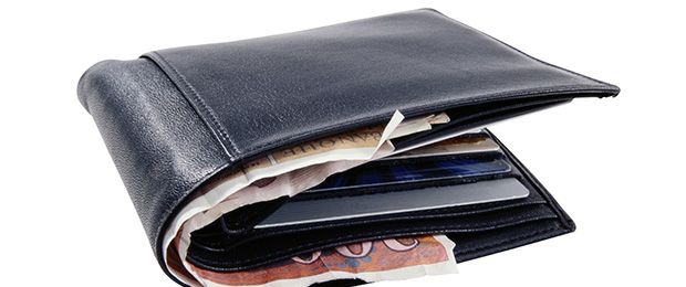 бумажник с евро внутри