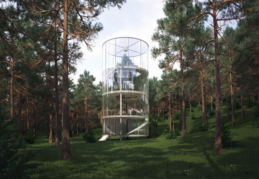 дом – теперь стеклянный – построенный в лесу вокруг дерева