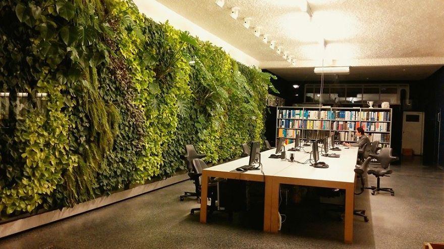 Вертикальное садоводство в читальном зале библиотеки