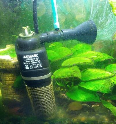 Как починить аквариумный фильтр