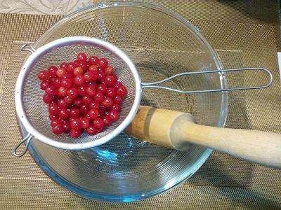Как заготовить калину с медом. Лечебные свойства калины