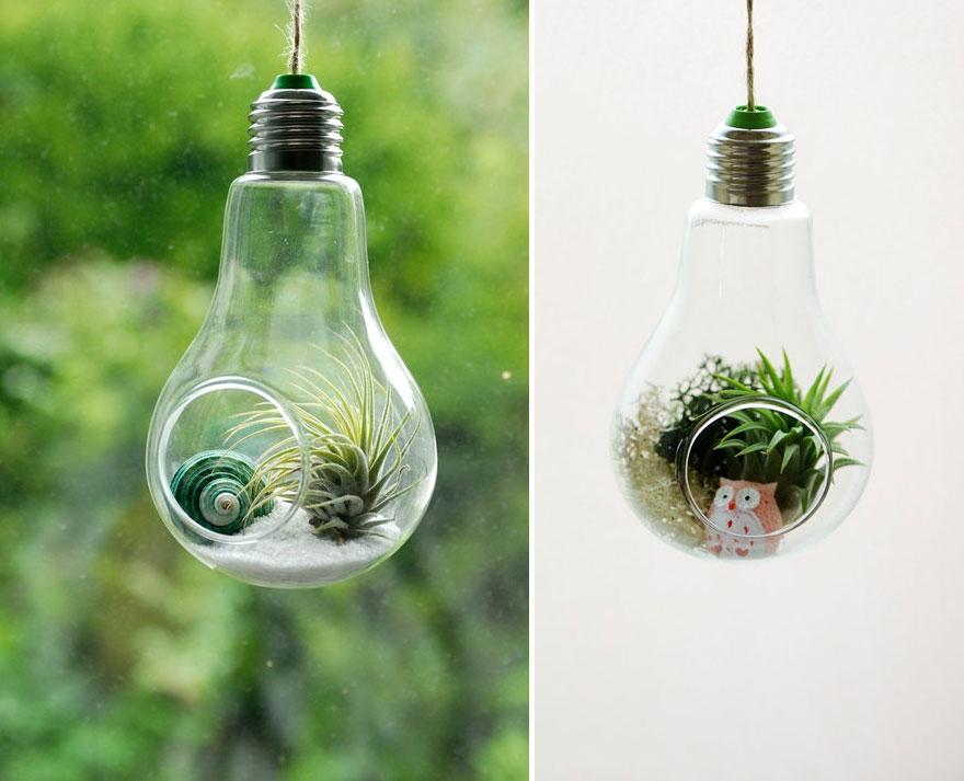флорариумы из лампочек накаливания