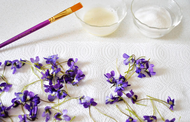 обмазываем засахаренные цветы взбитым белком кисточкой