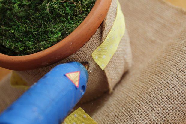 Добавьте на горшок элегантного цвета, обернув посередине мешковину лентой, сводя клеем концы последней на месте шва мешковины