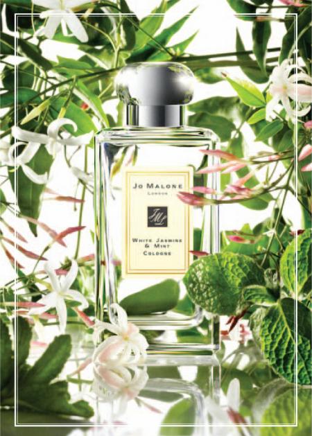 аромат Jo Malone London White Jasmine & Mint (Белый жасмин и мята)