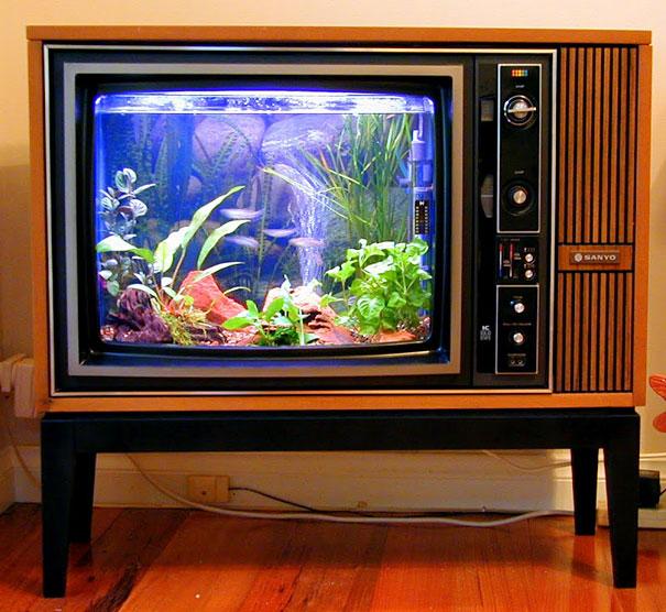 аквариум из древнего телевизора