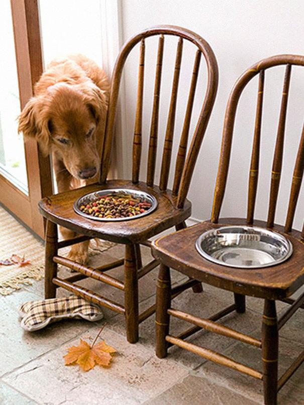 Старые стулья, превращенные в кормушки для крупных собак