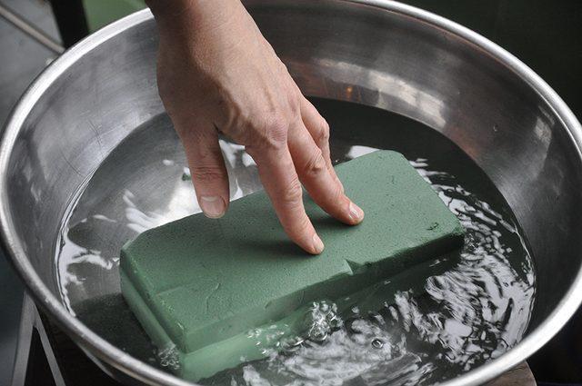 Как сделать новогоднюю елку своими руками: из веточек самшита на флористической губке - вымачиваем губку в воде около часа