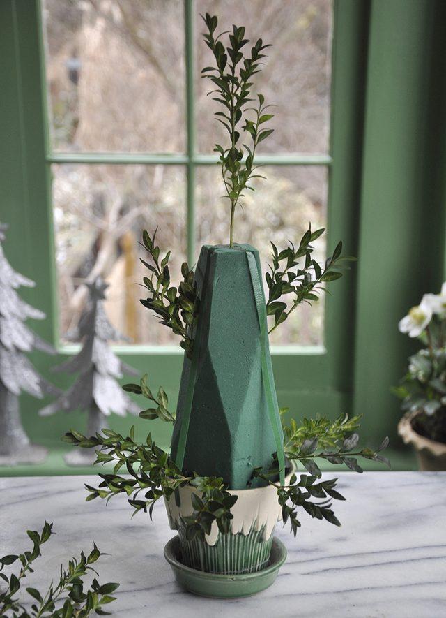 Как сделать новогоднюю елку своими руками: из веточек самшита на флористической губке - втыкаем в губку ветки самшита