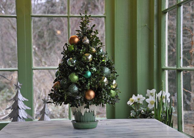 Как сделать новогоднюю елку своими руками: из веточек самшита на флористической губке