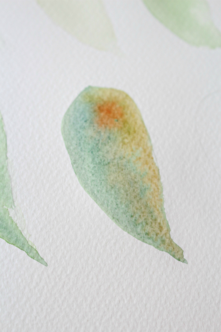Пока область все еще мокрая, нанесите легкий слой краски оттенка необработанного янтаря на более светлую область листочка