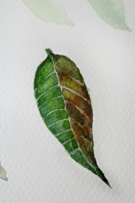Влажной тонкой кистью (№0) нарисуйте на листочке прожилки и дайте им высохнуть