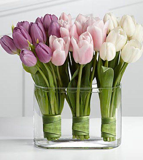 тюльпаны в прозрачной вазе, ножки цветов стянуты снизу