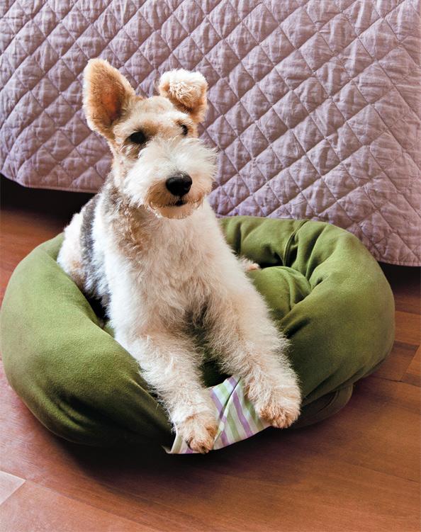 Как своими руками из старого свитера сшить лежак для кошки или небольшой собаки