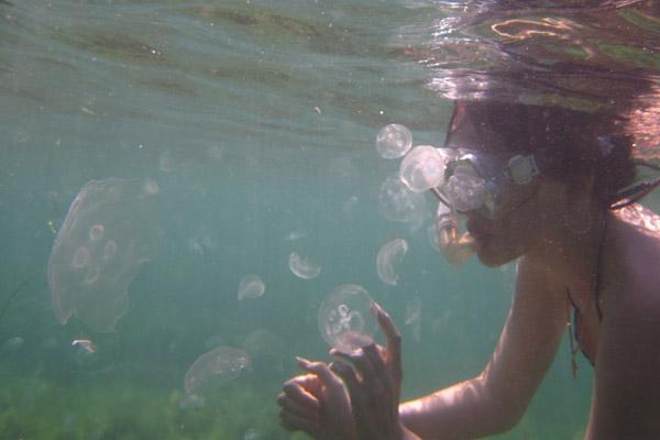 девушка плавает с медузами