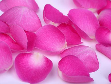 Заполните зону между боками кастрюли и блюда растениями или лепестками цветов
