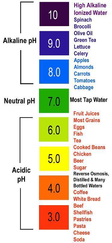 Степень, в которой определенная еда способствует «закислению» организма, варьируется и зависит от самой пищи.