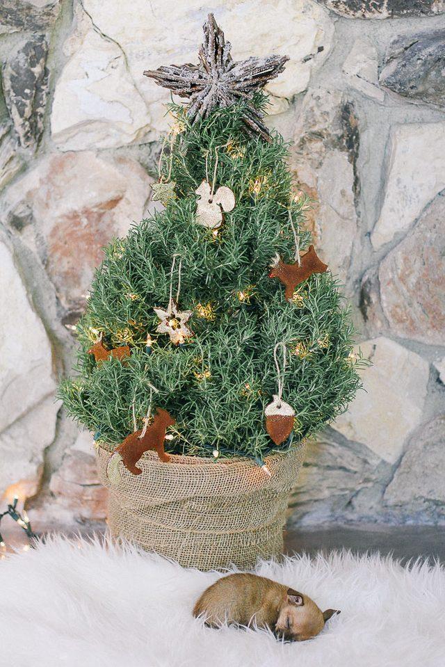 Новогодняя елочка, украшенная печеньем