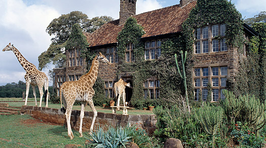 Найроби, Кения (Nairobi, Kenya)