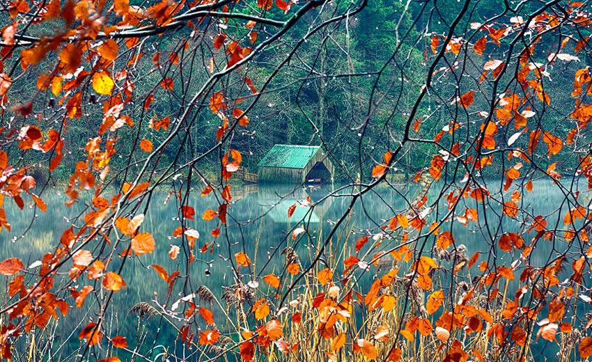 осень: озеров и лодочная станция сквозь ветки с яркими листьями