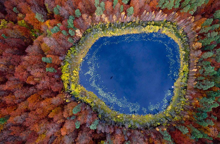 осень: вид сверху на озеро и деревья