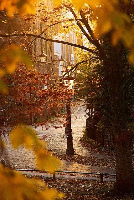 осень: сквер с фонарями